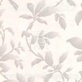 بوتانیکا ۱۹۶۰۱