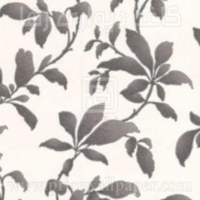 بوتانیکا ۱۹۶۰۲
