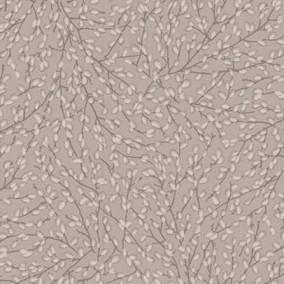 کوانتوم ۸۴۳-۳۱