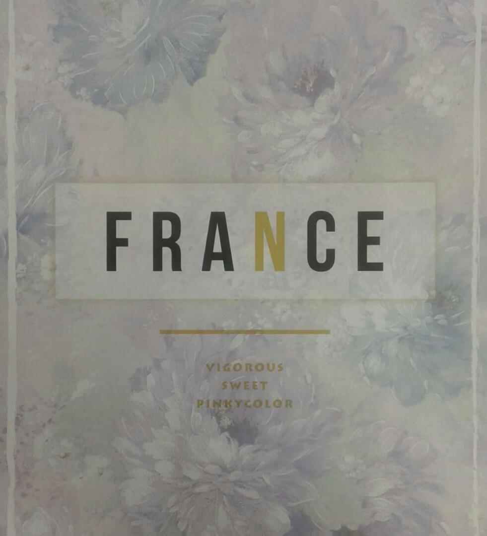 آلبوم کاغذ دیواری فرانسه