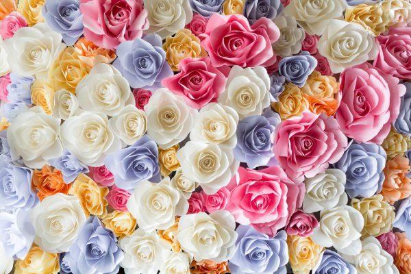 پوستر دیواری گل رز